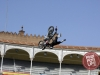 xfighters16_80