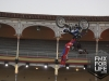 xfighters15_289